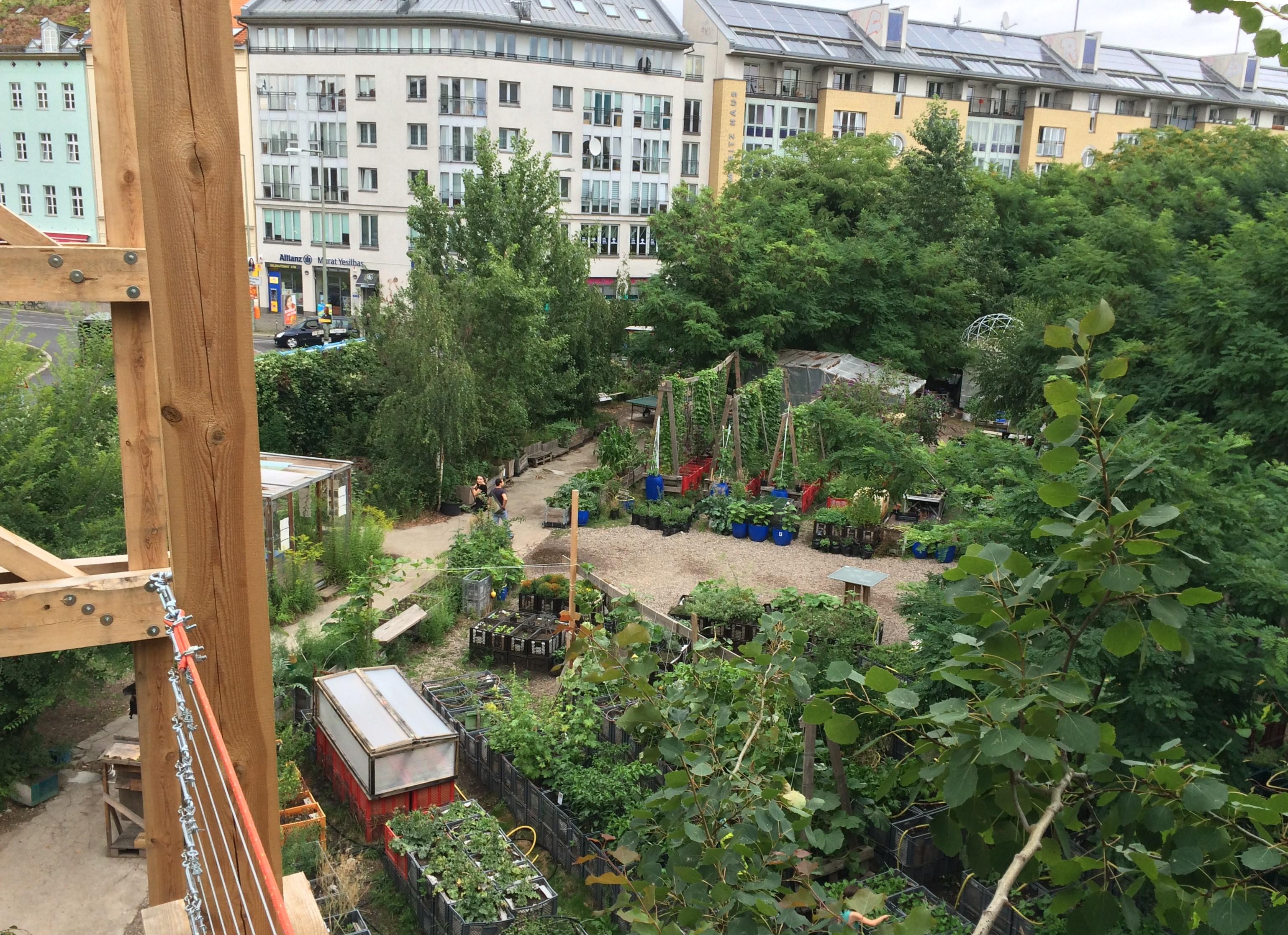 Prinzessinnengarten am Moritzplatz; Blick von der Laube